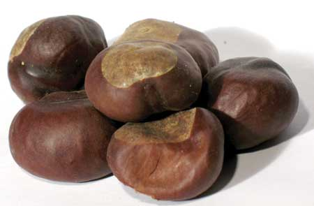 Buckeyes Whole 1 Lb